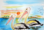 Pelican Drawings Metal Prints - Two Pelicans along The Swan River Australia Metal Print by Roberto Gagliardi