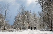Snow-covered Landscape Photo Prints - Two people doing a walk in beautiful forest in winter Print by Matthias Hauser