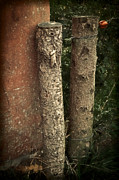 Old Fence Posts Metal Prints - Two Poster Metal Print by Odd Jeppesen