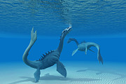 Sea Monster Mythology Prints - Two Sea Dragons Print by Corey Ford