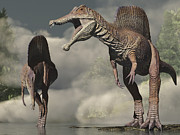 Two Animals Digital Art Framed Prints - Two Spinosaurus Looking For Food Framed Print by Craig Brown