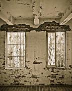 Marilyn Hunt - Two Windows