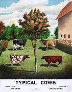 Horn Digital Art Prints - Typical Cows  Print by Nomad Art And  Design