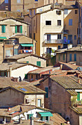 Hill Town Framed Prints - Typical Homes in the Hill Town Cortona  Framed Print by David Letts