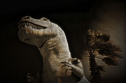 Cindy Nunn - Tyrannosaurus Rex