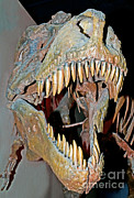 Tyrant Framed Prints - Tyrannosaurus Rex Skeleton Framed Print by Millard H. Sharp