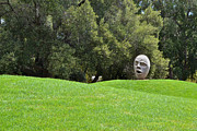 Campus Sculptures Prints - U C Davis Egghead Print by Bill Owen