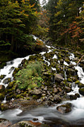 Green Forest Photos - Uelhs deth Joeu Falls by RicardMN Photography