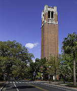 Lynn Palmer Studios Photos - UF Century Tower and Newell Drive by Lynn Palmer
