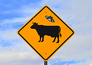 Ufo Cattle Crossing Sign In New Mexico Print by Catherine Sherman