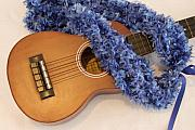 Mary Deal Photos - Ukulele and Blue Ribbon Lei by Mary Deal