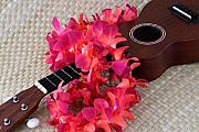 Mary Deal Photos - Ukulele and Red Lei by Mary Deal