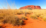 Bill  Robinson - Uluru Ayers Rock