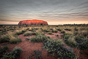 Red Sunset Framed Prints - Uluru Framed Print by Leah Kennedy