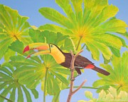 Bonnie Golden - Umbrellaed Toucan