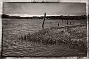 Mick Anderson - Umpqua River Pilings