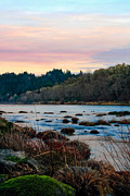 Elkton Art - Umpqua Sunset by Pamela Winders