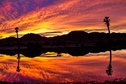 Yuma Prints - Unbelievable Sunrise Print by Robert Bales