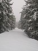 Jewel Hengen - Unbroken Trail