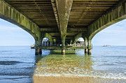 Natural Ocean Life Framed Prints - Under a Pier Framed Print by Svetlana Sewell