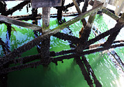 Burrard Inlet Posters - Under the Pier Poster by Gerry Bates