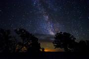 Saija  Lehtonen - Under The Stars at the Grand Canyon