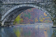 Geese Digital Art - Under Valley Green Bridge in Autumn by Bill Cannon