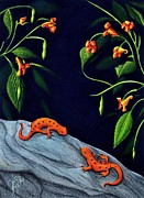 Newts Drawings Posters - Understory Poster by Danielle Haney