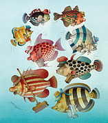 Fish Drawings - Underwater Story 01 by Kestutis Kasparavicius