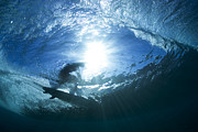 Under The Ocean Prints - underwater view of surfing at Off The wall Print by Sean Davey