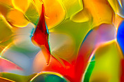 Macro Photos Glass Art - Underwater Welcome by Omaste Witkowski
