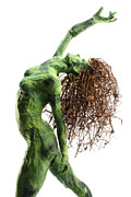 Plant Sculptures - Unfurled detail by Adam Long