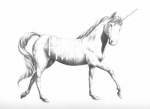 Stallion Drawings - Unicorn by Alexander M Petersen