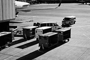 Air Travel Framed Prints - united airlines luggage carts and service vehicles on stand at San Francisco International Airport C Framed Print by Joe Fox