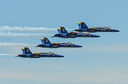 Navy Blue Framed Prints - United STates Navy Blue Angels Framed Print by Puget  Exposure