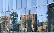 University Of Arizona Art - University Reflections by Meagan Suedkamp