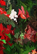 Botanical Fantasy Series - Unpromised Rose Garden by David Lane