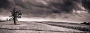 Arne Hansen - Untitled 510