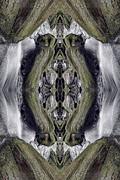 Untitled Print by Dawn J Benko