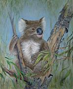 Koala Paintings - Up a Gum Tree by Rita Palm