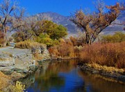 Owens River Metal Prints - Up A Lazy River Metal Print by Marilyn Diaz