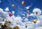 Glenn McCarthy Art and Photography - Up and Away - Hot Air Balloons