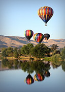 Prosser Balloon Rally Prints - Up Up and Away Print by Carol Groenen