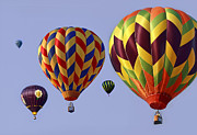 Hot Air Art - Up Up and Away by Marcia Colelli