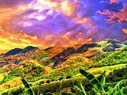 Dominic Piperata - Upcountry Maui Sunset
