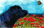 Black Lab Puppy Paintings - Updraft by Molly Poole