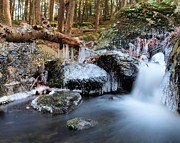 Burr Photos - Upper Burr Falls by Frank Piercy