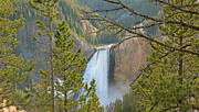 Yellowstone Park Prints - Upper Falls Yellowstone National Park Print by Jennie Marie Schell