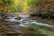 Rivers In The Fall Photo Prints - Upstream Fog Print by Bill  Wakeley