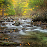 Rivers In The Fall Photo Posters - Upstream Fog Square Poster by Bill  Wakeley